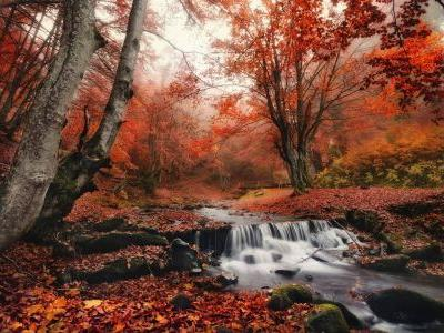 Take a peep: 7 spectacular autumn colour trips guaranteed to turn your head