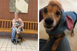 Shelter Dog With Cancer Finally Finds The Perfect Home
