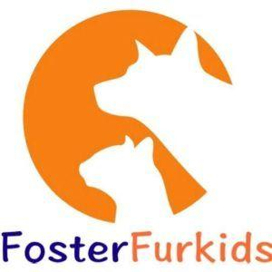 Alison Eastwood's Foster Fur Kids Unites Rescues with Fosters