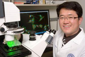 $5.66 Million CIRM Grant Strengthens UC Davis Researchers' Spina Bifida Stem-Cell Research