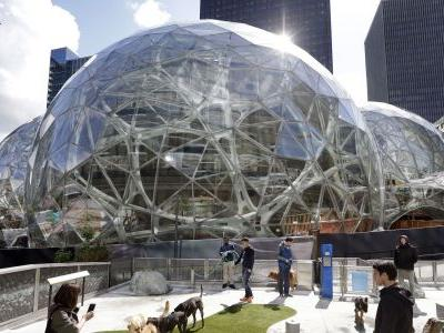 Amazon's HQ2 competition is pushing 'loser' cities to become the next Silicon Valley - but some experts say it's a dangerous plan