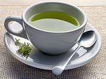 Alzheimer's-like symptoms reversed in mice thanks to diet of compounds found in green tea & carrots