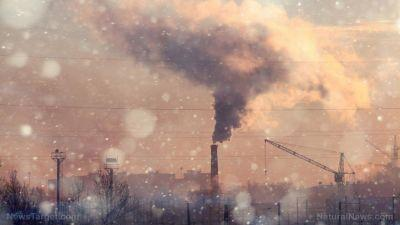Air pollution confirmed to have multi-generational damaging effect on future offspring