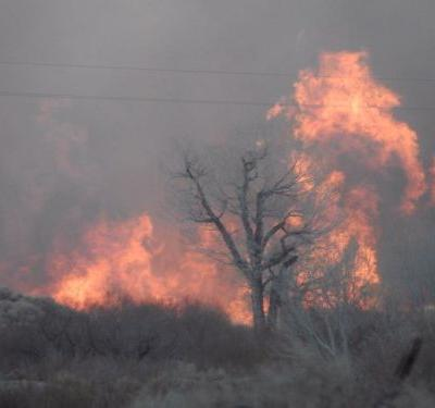 Wildfire in central California forces evacuations