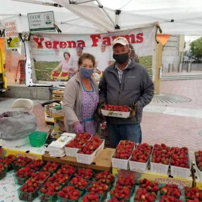 Op-ed: We Must Save Farmers' Markets