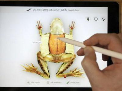 Apple iPad For Education Failed To Wow Critics, Chromebook Devices Still More Practical