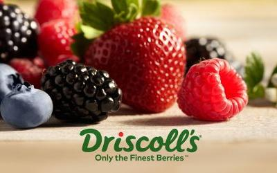 Driscoll's using new technology to improve flavor, food safety