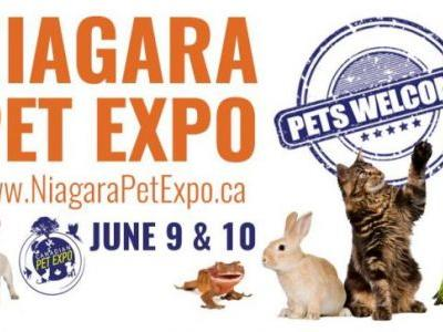 Chances to Win 2 Family Passes in our Niagara Pet Expo Giveaway