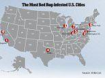 Are YOU living in a bed bug haven?