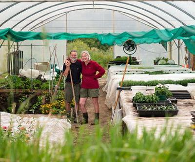 How these red hot chilli growers turned their Horowhenua block into a small-scale market garden