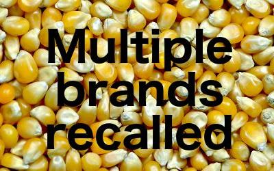 Walmart, Loblaw, Metro recall popcorn in Canada; insects found