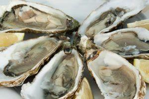 Raw Oysters with Vibrio parahaemolyticus, Vibrio albensis, Shigella flexneri, norovirus and non-O157 Shiga toxin-producing E. coli sicken 12 in California