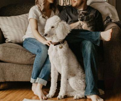 Can I bring my pet on vacation? Your guide to home swapping with pets