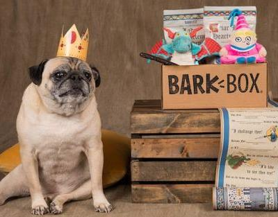 What Is The Best Subscription Box For Small Dogs?