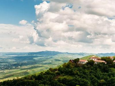 Resilience and Post-Soviet Identity Politics Are in Every Glass of Georgian Wine