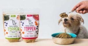 Why Happy, Healthy™️ Topper Is The Ultimate Superfood For Senior Dogs