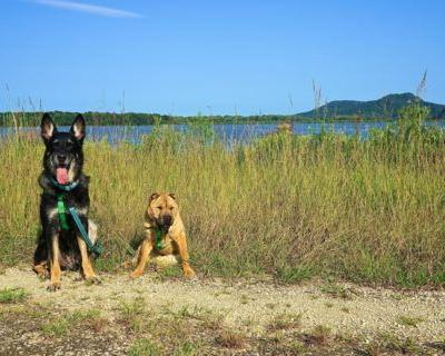 Wisconsin's Top Pet Friendly Attraction: Trempealeau National Wildlife Refuge