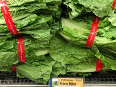 Beware The Thanksgiving Salad: CDC Says No Romaine Lettuce Is Safe