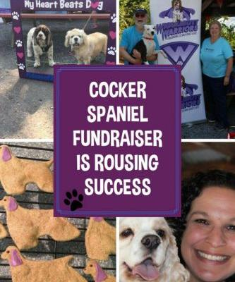 Cocker Spaniel Fundraiser is Rousing Success + Giveaway