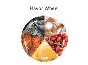 The Science of Flavor