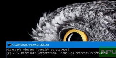 Windows 10 PC / Mobile Build 15010 may be next, shows leaked screenshot