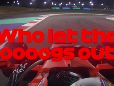 Excellent News: The Dog That Stopped F1 Practice In Bahrain Has Been Rescued