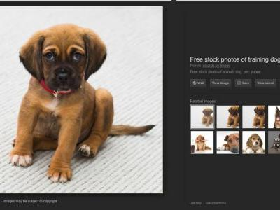 How to get the Google Images 'view image' button back in Chrome