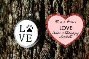 Win a Paw LOVE Aromatherapy Locket + Help Us Select a New Bracelet Style!