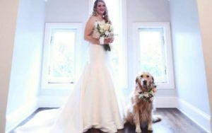 Golden Retriever Serves As Flower Girl At Her Pawrents' Wedding