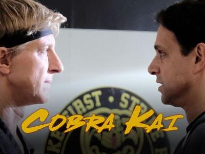 What To Expect From Cobra Kai Season 3