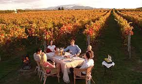 Wine Tourism - One of the major contributors to the revenue