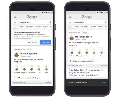 Google integrating pollen forecast data into search results