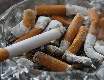 The Dangers of Smoking Around Your Pets
