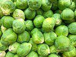 'Brussels sprouts drug' could treat Alzheimer's
