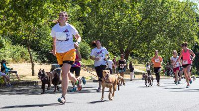 Calling all paws! 18th annual Furry 5K to benefit orphaned pets