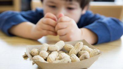 A Potential Long-Term Cure For Deadly Peanut Allergies Could Be Around The Corner