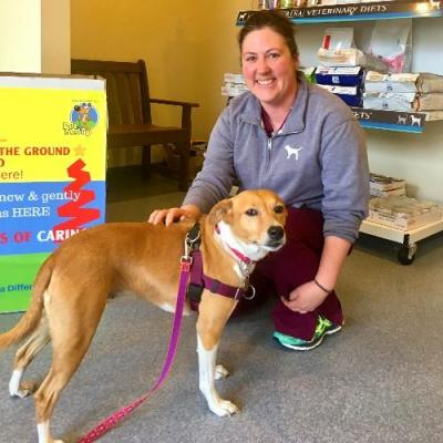 Potcake Mystery Mix: Genetic Testing with Royal Canin