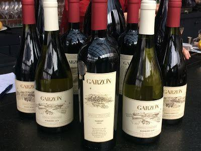 Bodega Garzón: Uruguayan Treasures, From Albarino to Tannat