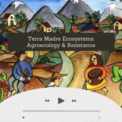 SFYN Podcast: Exploring Agroecology by Mélanie Antin