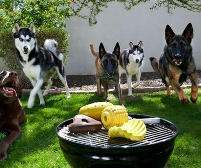 Super Chewer Gets All Up In Your Grill With June's Theme: BACKYARD BBQ!