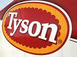 Tyson recalls 36,000 pounds of chicken nuggets over fears they contain RUBBER