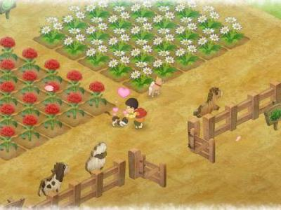 Doraemon Story of Seasons Rated in Taiwan