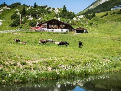Meet the Village Cheesemakers of Austria's Alpine Cheese Trail