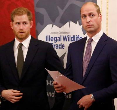 Are Prince Harry & Prince William Feuding? Meghan & Kate Were Reportedly Never The Problem
