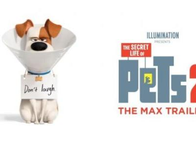The Secret Life of Pets 2 Movie trailer