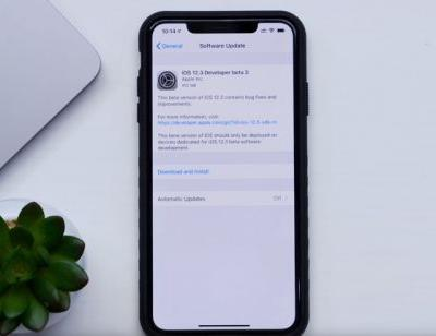 Apple's iOS 12.3 beta 3 in action