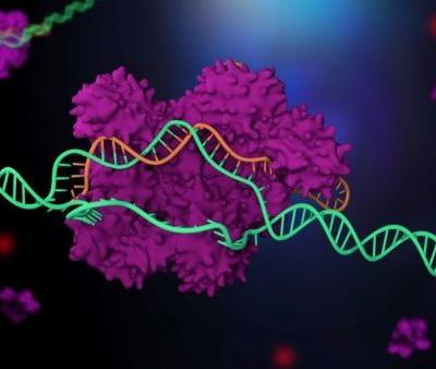 A Safer CRISPR? Cyrus, Broad Institute Look to Quell Concerns