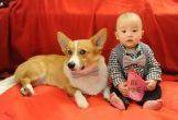 Feel the Love in our Gallery of Valentine's Giveaway Dog Photos
