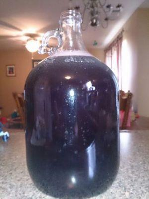 37 Day, Home-Made Wine!