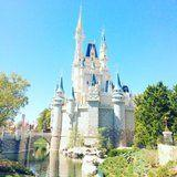 The Top 10 Things For Adults to Do at Disney World